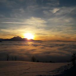 nature winter nebelmeer freetoedit