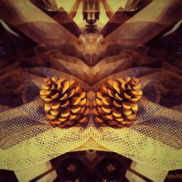 picsart picsarteffects picsartedit mirroreffect imagination