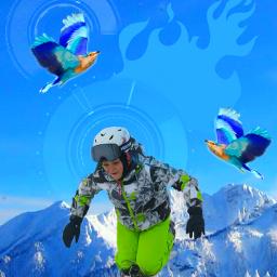 sport sportsedit extreme winter nature
