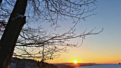 nature sunset sunsetsilhouette sunsetsky forrest