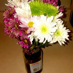 freetoedit flowerbouquet injar
