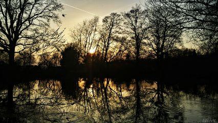 freetoedit sunsetsky sunset teich sun