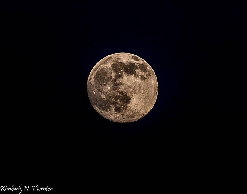 #FreeToEdit #moon #astrophotography #astronom #astro #night #nightsky