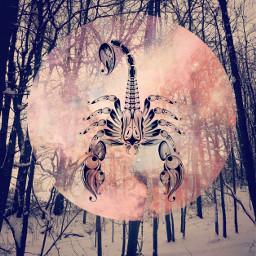 zodiac zodiacsign zodiacsymbols art freetoedit