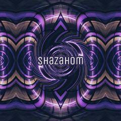 shazahom1 design abstract mirrorart mirrormania