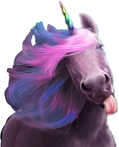 unicornsticker unicornstickers unicorn cute love