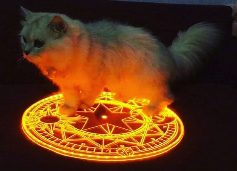 #circleart #cats #starcircle#yellowcircle#whitecat #wallpaper #sakuracardcaptor #darkcircle #magical@_fondos_kawaiis_  @cute2315 @mikukingofpop @catalina1384 @cielove21