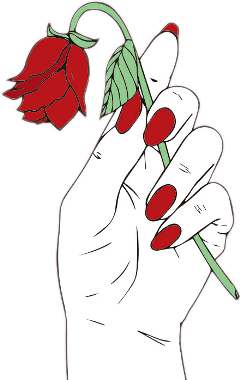 hand red rose redrose freetoedit