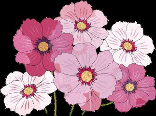 cute flower freetoedit