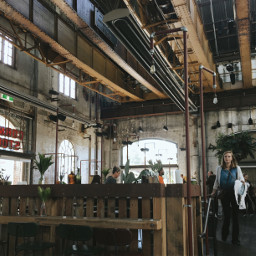 freetoedit sydney gallery cafe travel